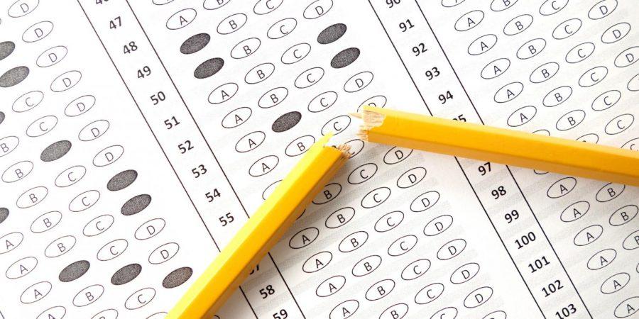 Learning is Longer Than a Standardized Test